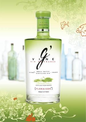 gin dandy gvine gin bottle.jpg
