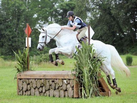 millbrook horse show jump 2 (1).jpg