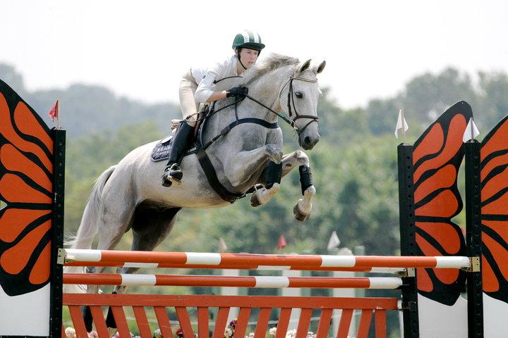 millbrook horse show jump.jpg