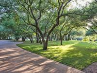 7717 Sandia Loop Austin TX-MLS_Size-034-18-front yard4-1024x768-72dpi.jpg