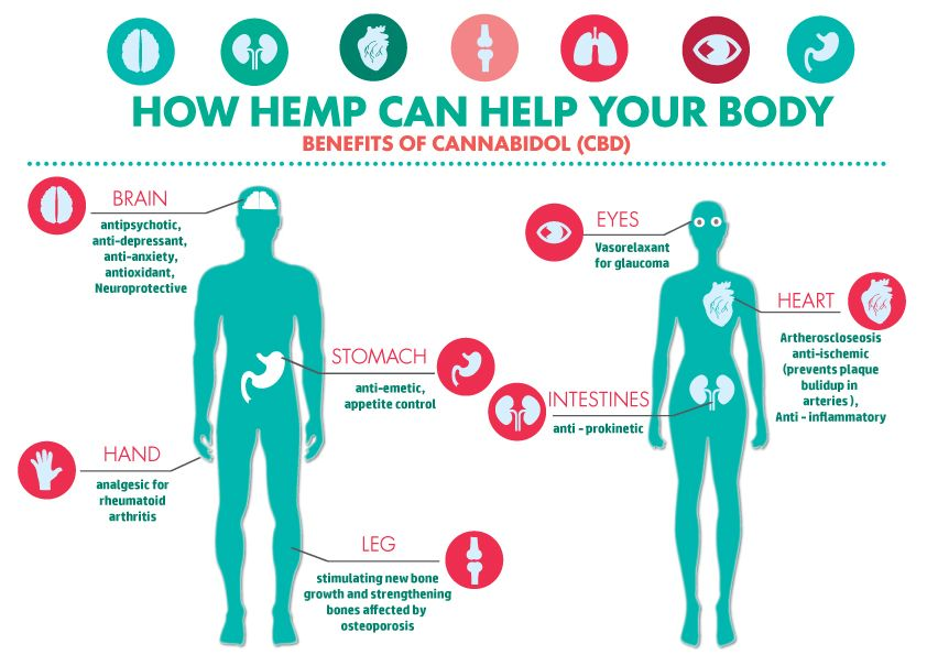 Hemp BEnefits_FO850F8044C1.jpg