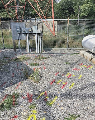 Private-Utility-Lines-Located-at-Site-Tower-Selisgrove-PA.jpg