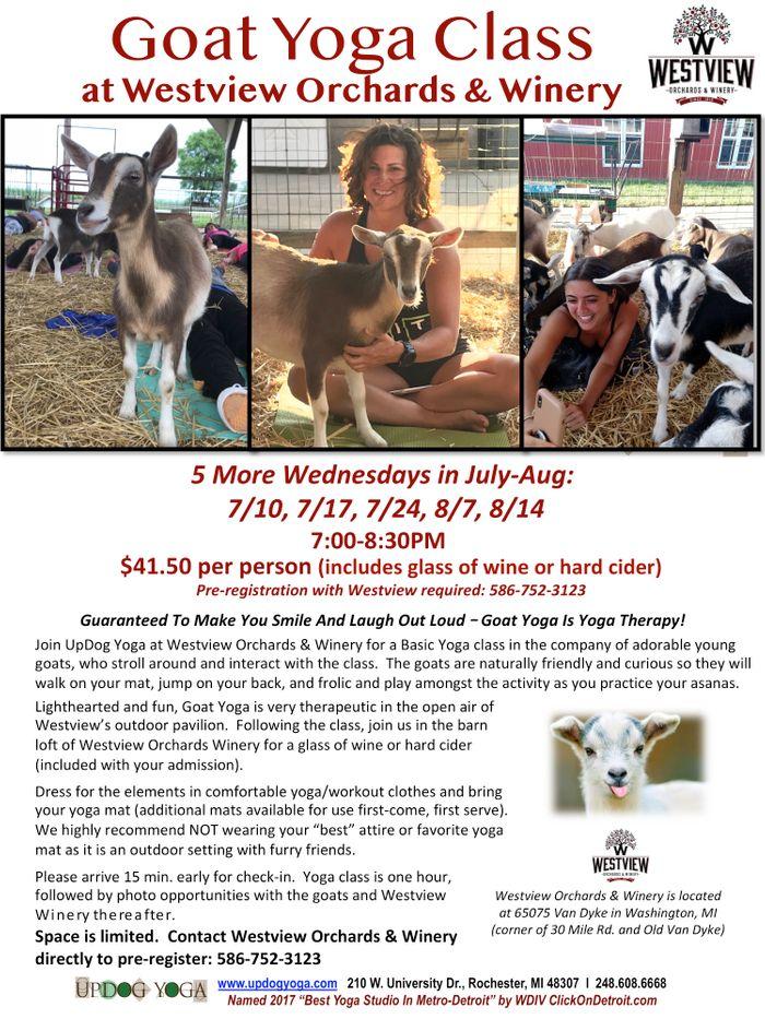 Goat Yoga Westview Jul_Aug 2019_UpDog.jpg