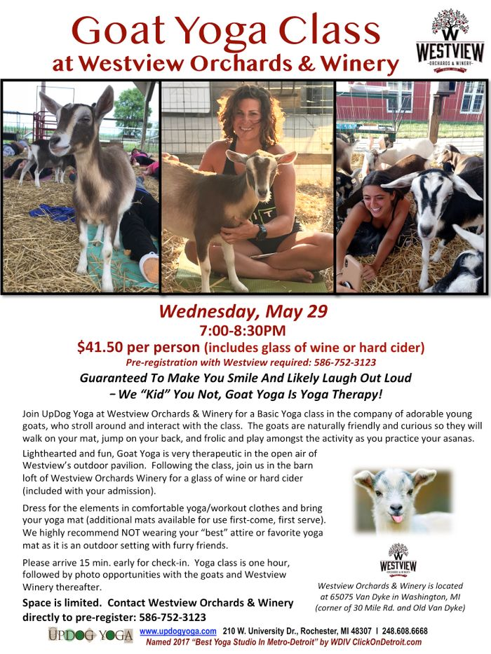 Goat Yoga Westview May 29_UpDog.jpg