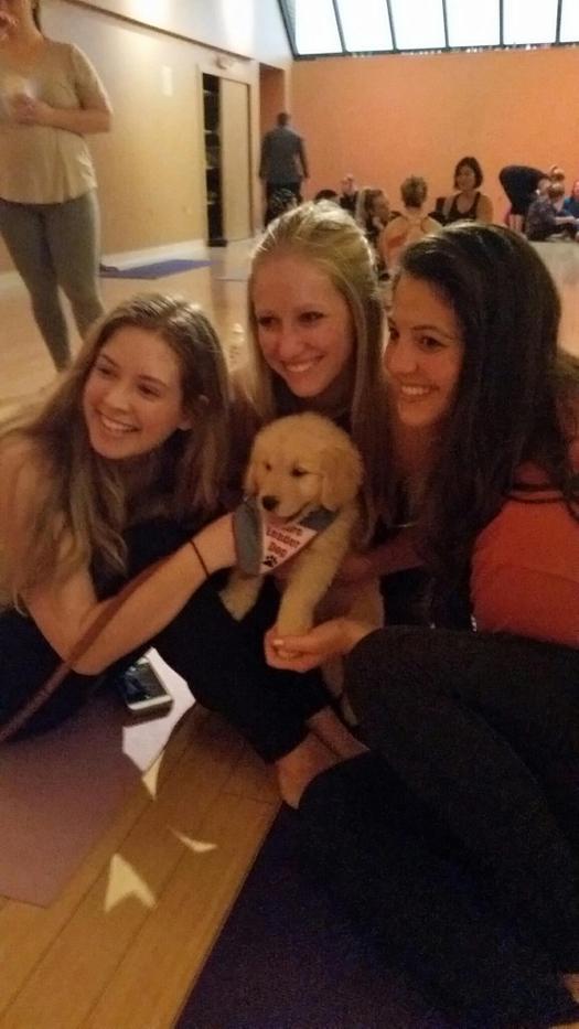 Puppy Love Nov.jpg
