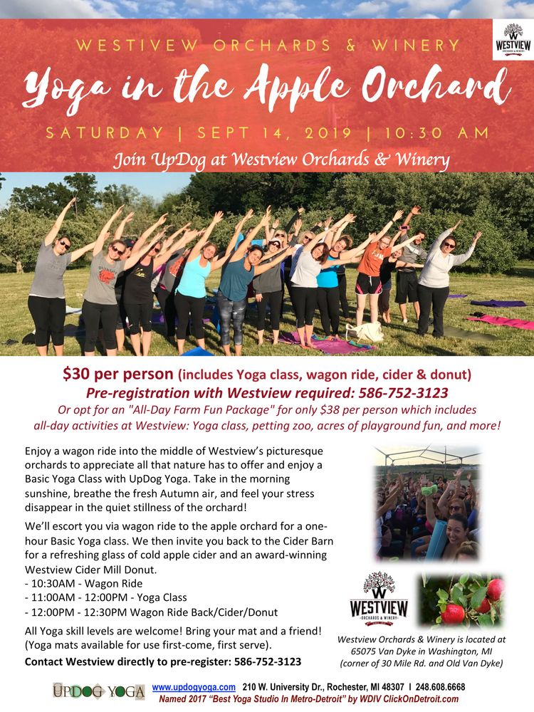 Yoga In Apple Orchard Westview Sept_UpDog.jpg