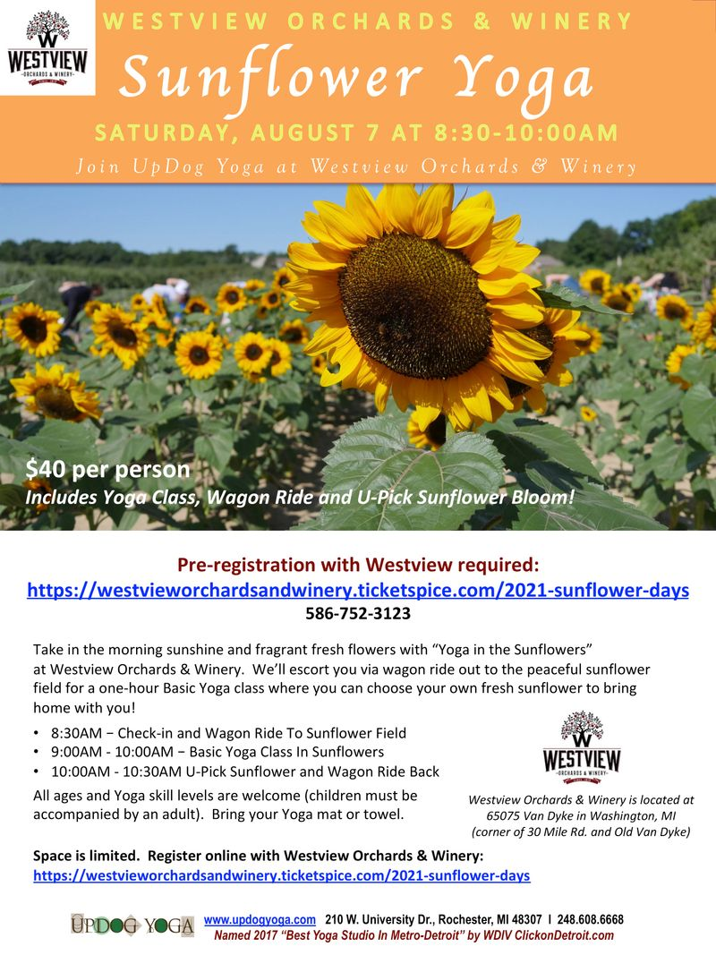 Yoga In The Sunflowers Westview Aug 7 2021_UpDog.jpg