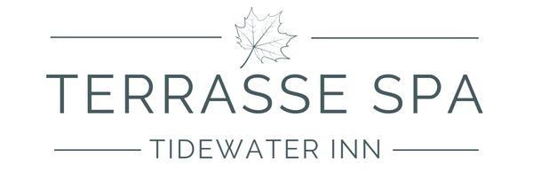 Terrasse Spa Logo TRANSPARENT.jpg
