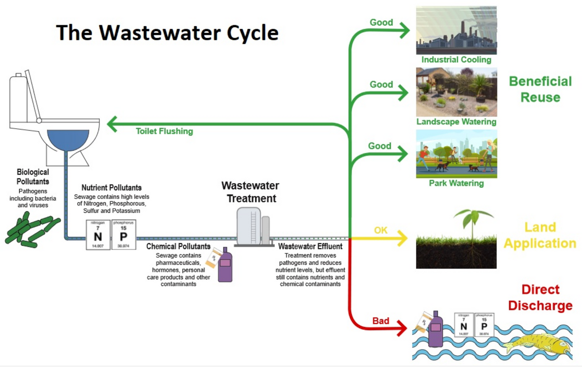The Wastewater Cycle