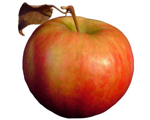 EastwayInsuranceAgency.com Apple.jpg