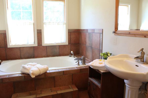 Texas Star Bathroom.jpg