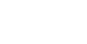 NLV_logo.png