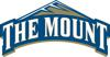 TheMount_Logo_element_view.jpg