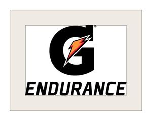 GAT13LOGO_Endurance_vert_fc_blk.jpg