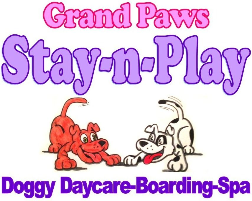 Grand Paws Stay-n-Play