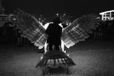 Rino Pizzi - Birdman (Source image 1)