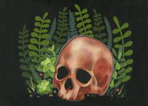 Stephanie Chambers - Skull - Weeds in My Head, I'll Sleep When I'm Dead