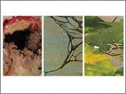 exhibitions22.jpg