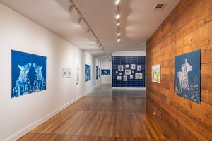 Bruisers exhibition