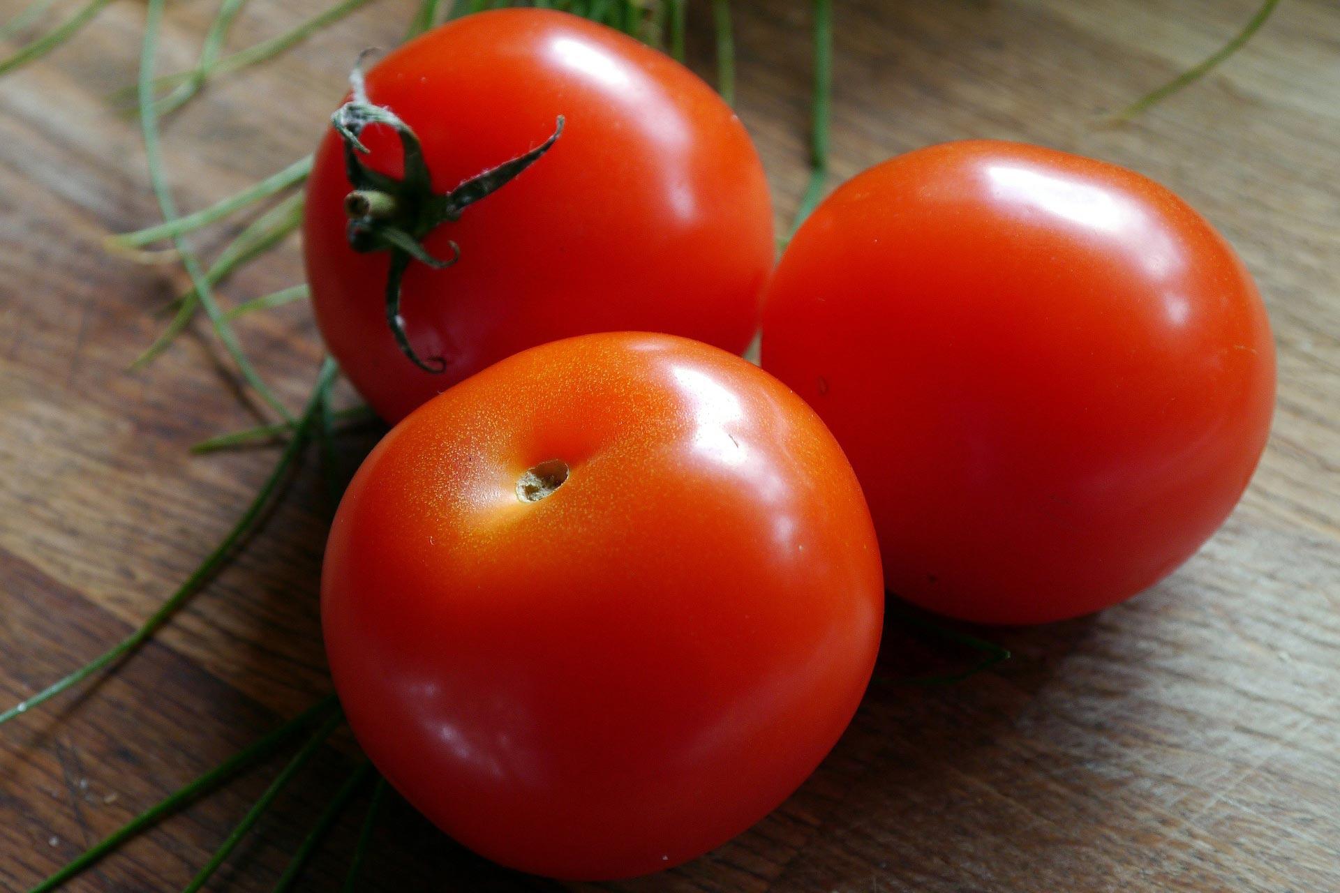 tomato-498721_1920.jpg