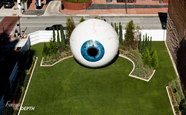 LTS_Eye-8488.jpg
