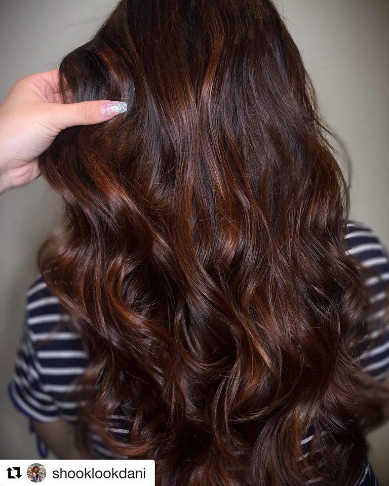 Dani's choco brown hair website.jpg