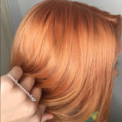 emilys orange.JPG