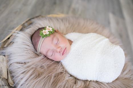 Newborn Baby Photos in Basket