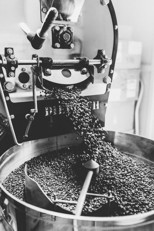 Caliche Coffee Shop-0326.jpg