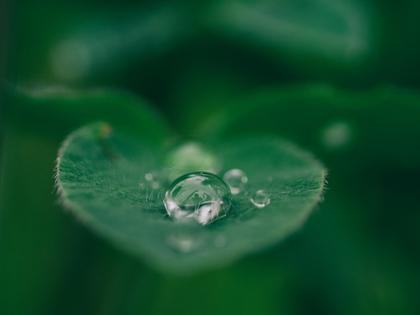 Meditation drop.jpg