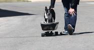 Skate-2.png