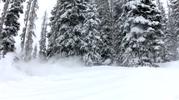 Got-Snow-4.png