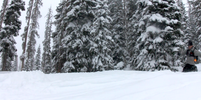 Got-Snow-1.png