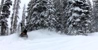 Got-Snow-3.png