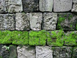 karen-hembree-summer-stone-wall.jpg