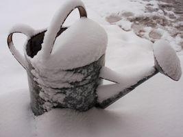 karen-hembree-winter-snow-stack.jpg