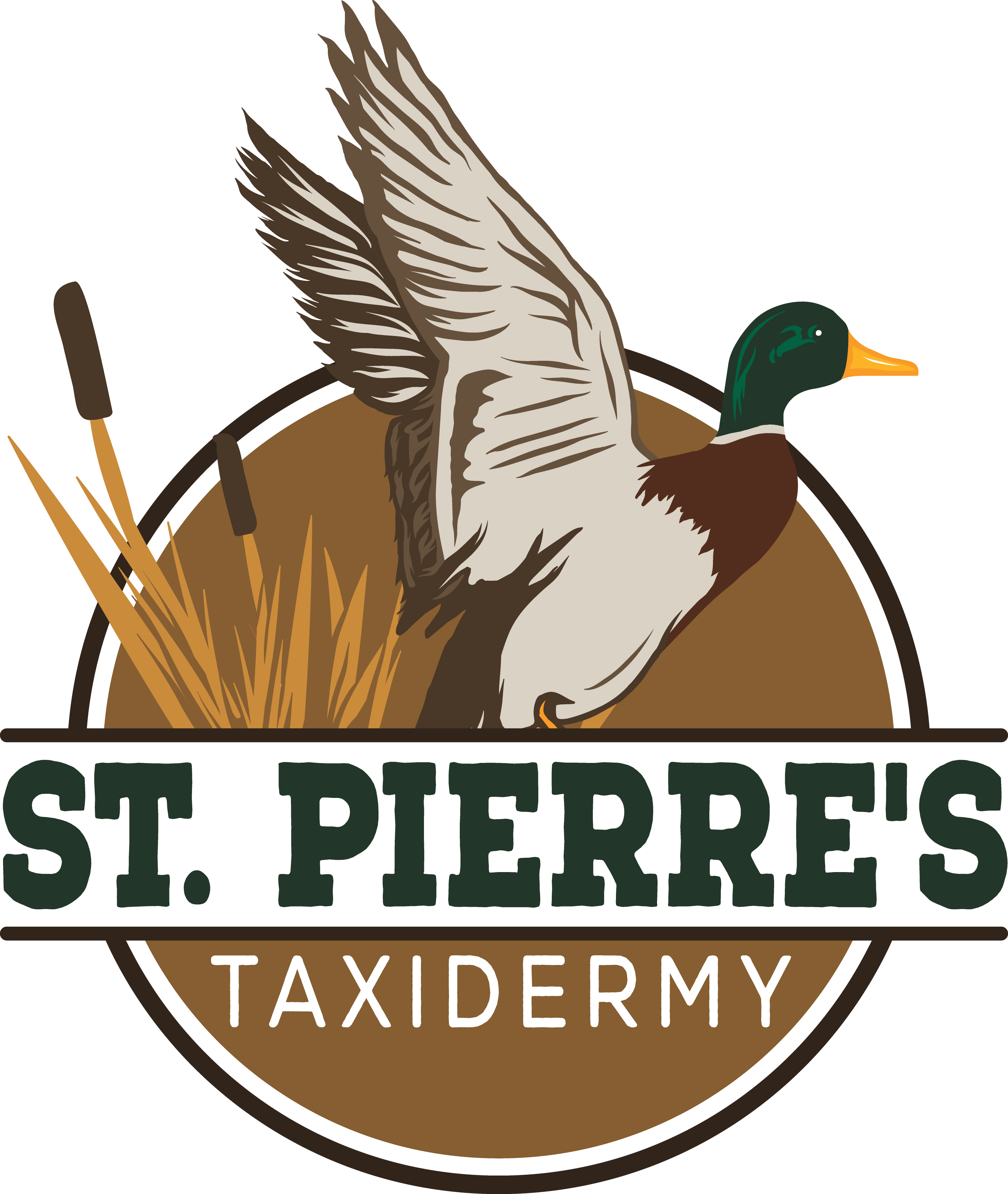 St. Pierre's Taxidermy
