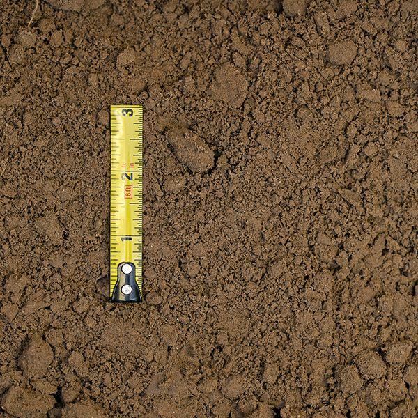 soils-pit-chocolate-loam-01-xl.jpg