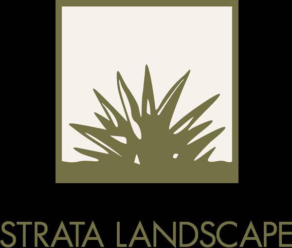Strata Landscape