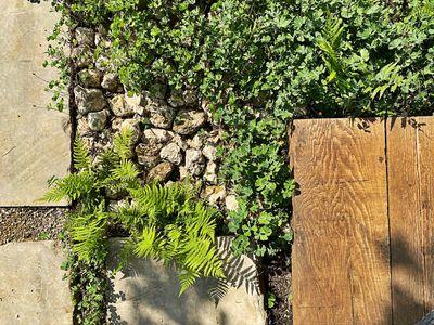 cuernavaca 18.jpg