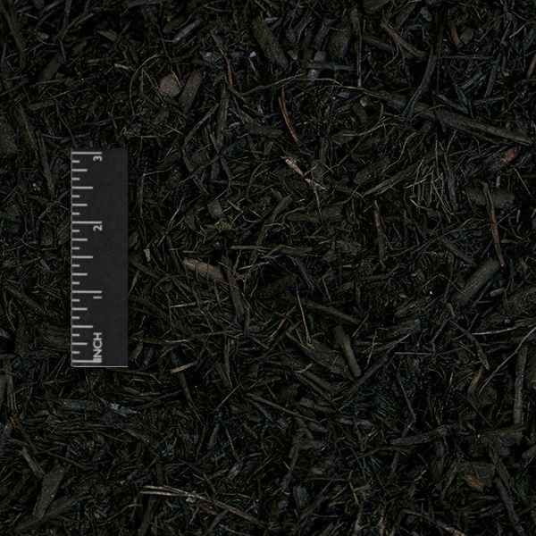 01 - mulches black dyed.jpg