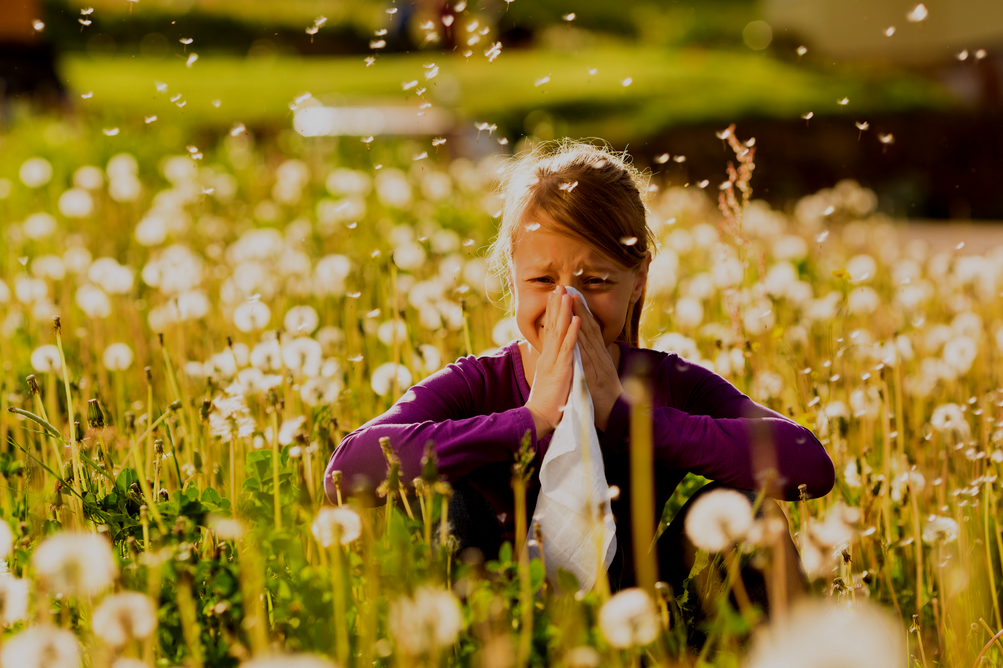 Relieve Seasonal Allergies
