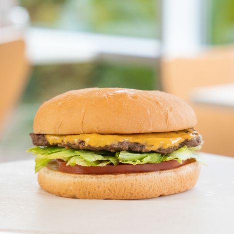 PTburger-for-website-2.jpg