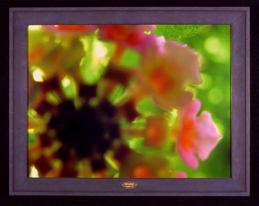 Fairyland, Exhibit K, framed