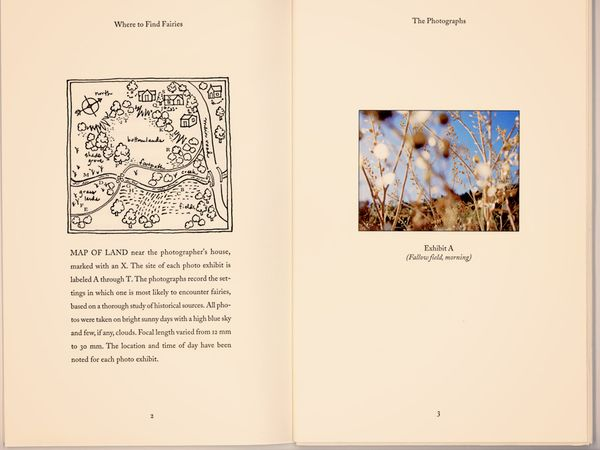 Fairyland, Pages 2 and 3