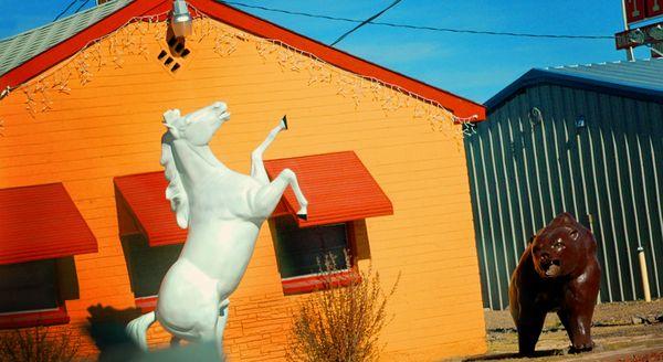 White Horse Brown Bear Orange House
