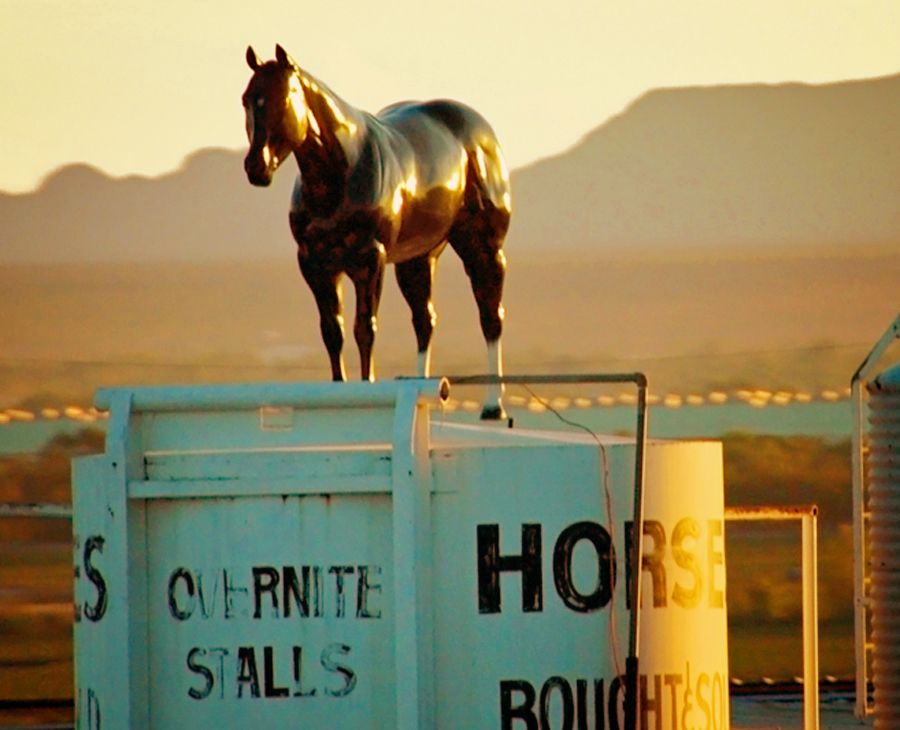 Postcards from the American West, Horses Bought and Sold, detail
