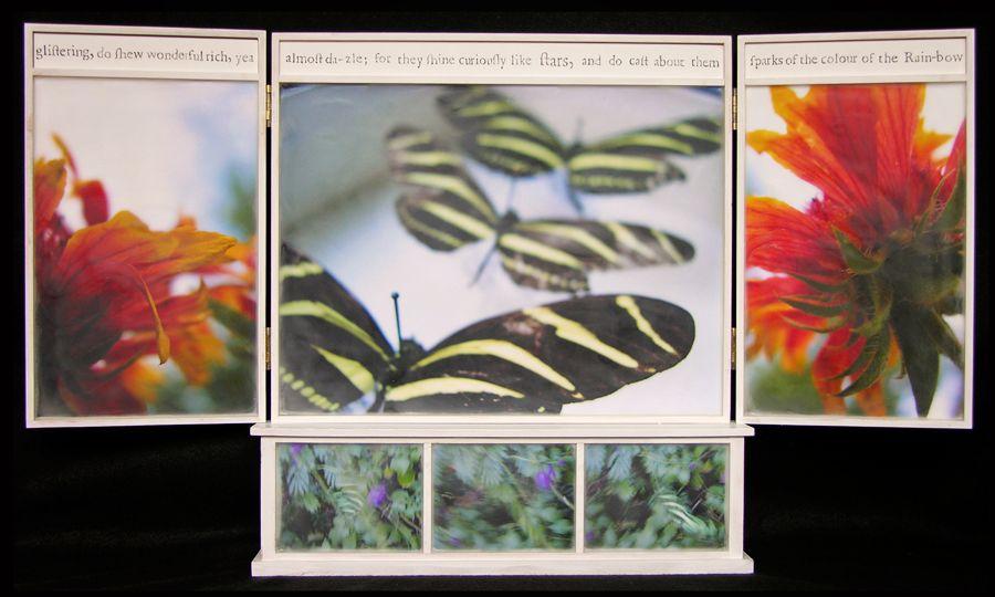 Biota Cabinet 64 with Predellas: Zebra Butterflies, Indian Blanket, and Zebras in Flight