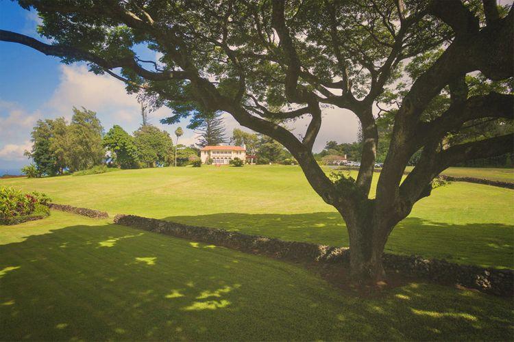 Kaluanui Hawaii