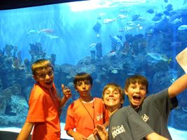Cameron Park Zoo trip